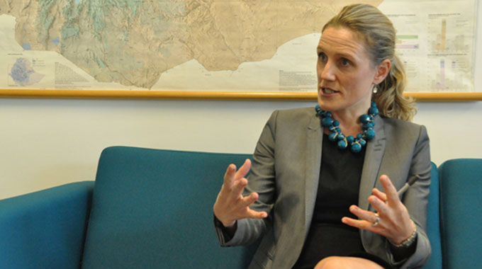 US dollar payments can spur investment in green energy – UK Ambassador